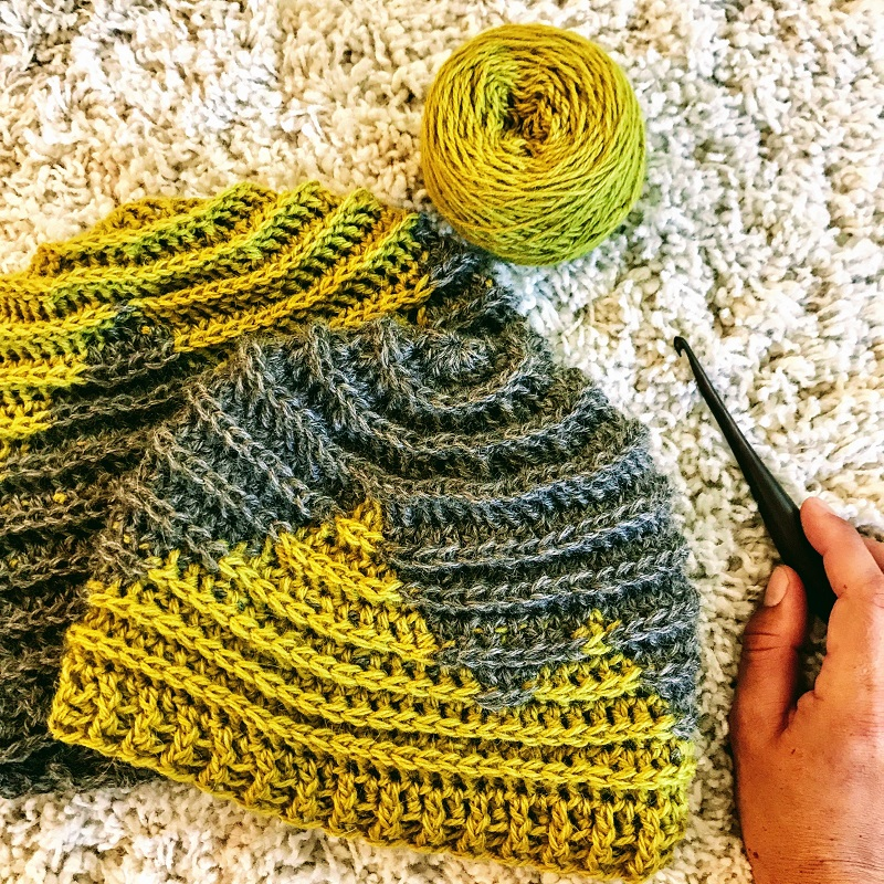 Photo of the Twin Sisters Beanie with hook and yarn